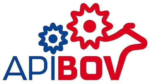 LOGO_API_BOV.png